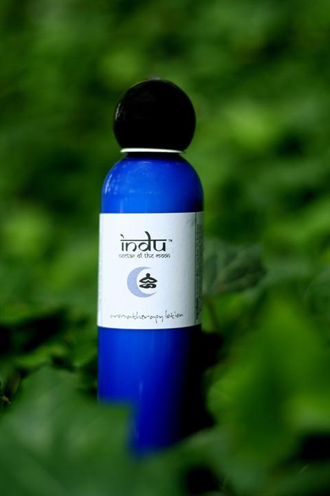 Indu01