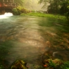 Ally Mill Springs01