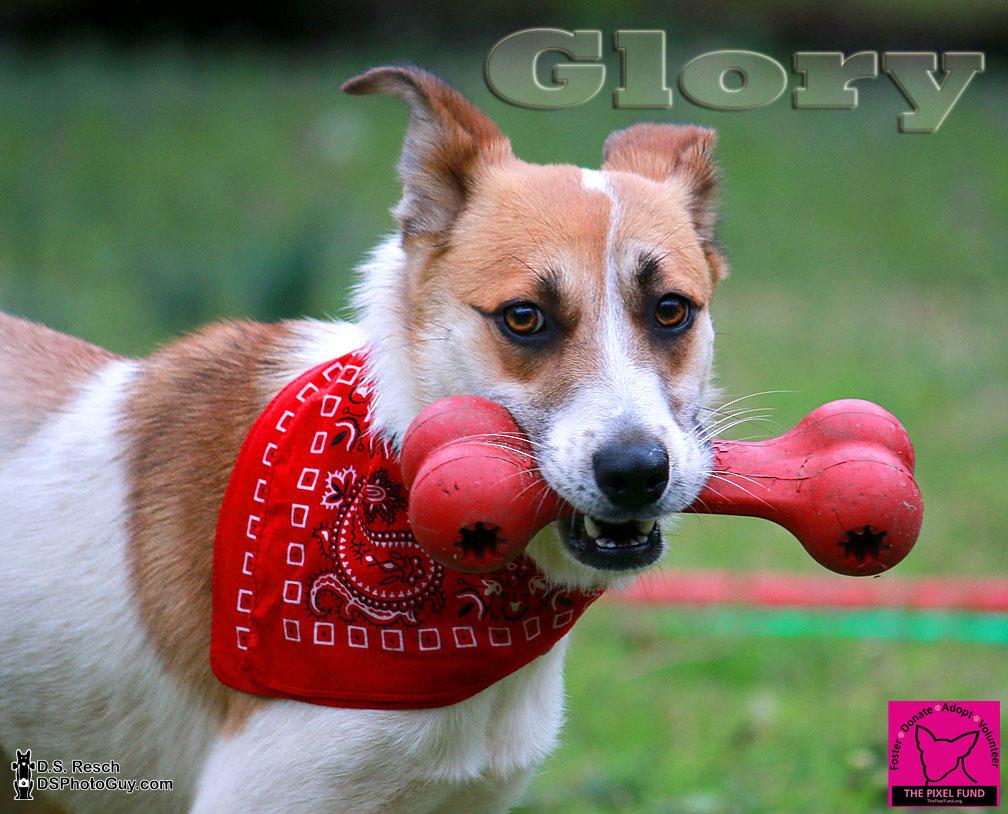 Glory_04
