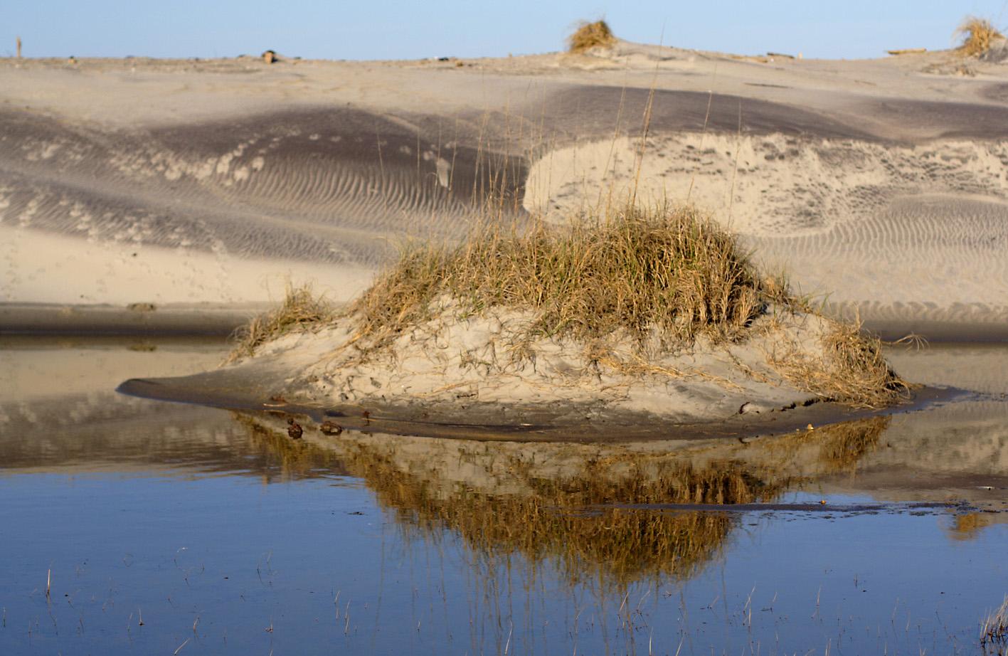 watery dune